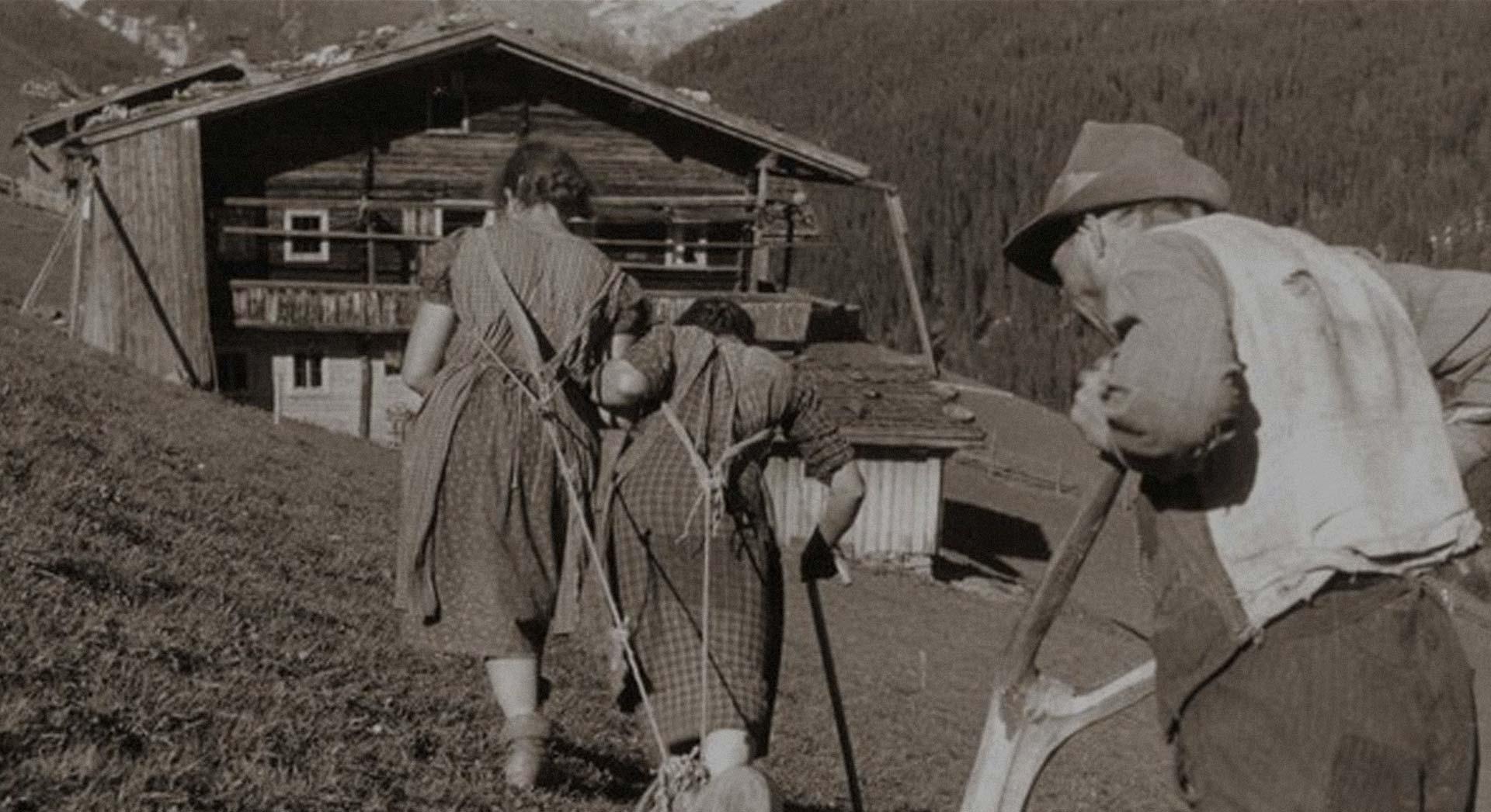 Willkommen in der Welt der Bergbauern!